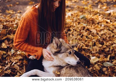 a young active girl walks with her big dog in the park, in a pile of autumnal fallen leaves