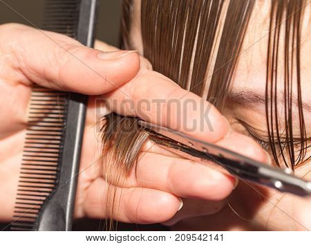 cutting hair in a beauty salon . photo in the studio