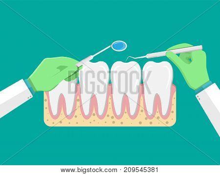 Dentist with tools examines teeth. Tooths icon with gum. Human teeth in flat style. Dental concept. Hygiene and oralcare. Vector illustration