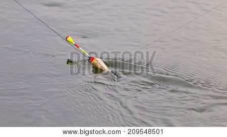 float for fishing on the water . In the park in nature