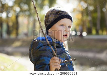 Happy little boy in autumn park