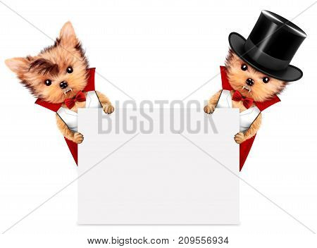 Funny cartoon animal Dracula behind a banner. Halloween and Dead day concept. Realistic 3D illustration.
