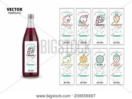 Apple, kiwi, pomegranate, orange, grape, carrot, peach and strawberry fresh juice trendy packaging set. Realistic glass bottle with linear labels. Layout of food identity branding vector illustration