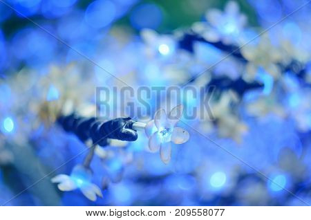 Christmas Led Lights In The Form Of Flowers, Blue Bokeh, Selected Focus