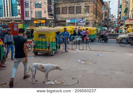 DELHI, INDIA - SEPTEMBER 25 2017: Unidentified people with a green rickshaws and an auto-rickshaws parked in a dirty streets in Paharganj Delhi, with a white dog walking in from of them. Delhi is the 2nd most populous city in India after Mumbai.