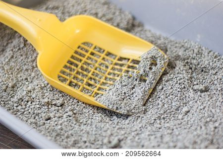 Yellow scoop on pets litter box filled by litter