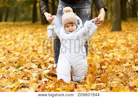 First steps of little kid in autumn park. Mother teaching her cute little son to walk