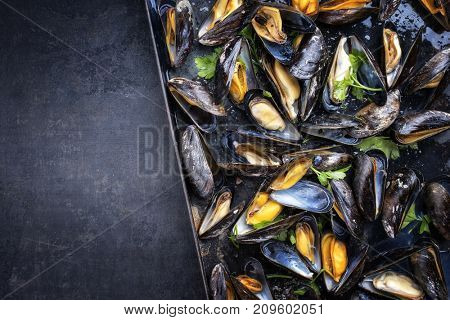 Traditional barbecue Italian blue mussel in white wine as top view in a tray with copy space left