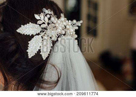 Bride Back View