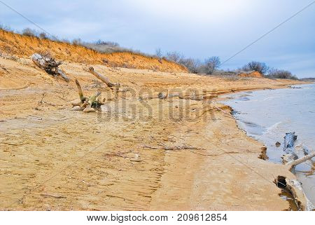 Sandy beach of the Volga river was littered with snags in the spring