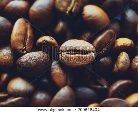Fragrant coffee beans arabika drink energy grains wallpaper background morning fresh warm texture view macro closeup