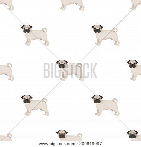 Bulldog, single icon in cartoon style.Bulldog, vector symbol stock illustration .