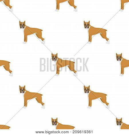 Boxer, single icon in cartoon style.Boxer, vector symbol stock illustration .