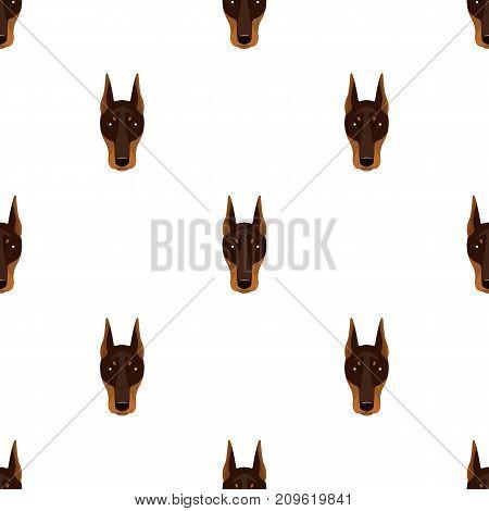 Dog breed, Doberman.Dobermann's muzzle single icon in cartoon style vector symbol stock illustration .