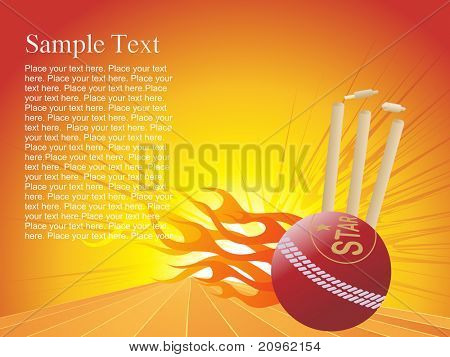 vector  illustration of fire cricket background