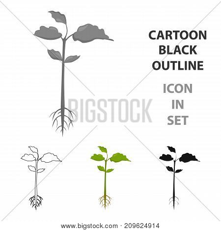 Plant icon of vector illustration for web and mobile design