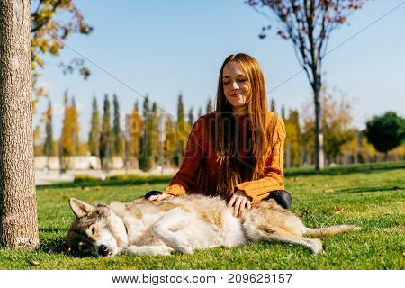 lovely red-haired girl sitting on a green lawn and stroking her dog. Sunny weather, autumn day, happy girl
