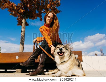 the lovely girl in the park walks with her dog. The girl is sitting on a bench. Beautiful rear view. Warm autumn day