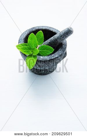 Stone mortar and pestle with peppermint leaf on white wooden background with copy space.