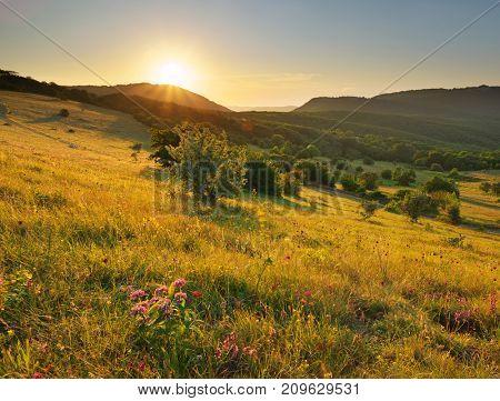 Mountain landscape. Composition of nature.