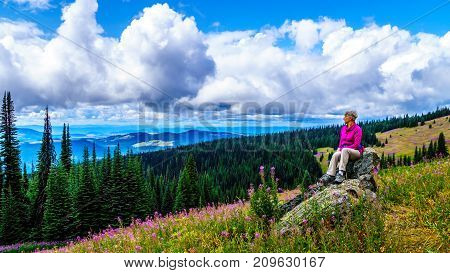 Senior woman sitting on a large rock in the high alpine surrounded by pink Fireweed flowers, during a hike to Mount Tod at Sun Peaks village in the Shuswap Highlands of central British Columbia