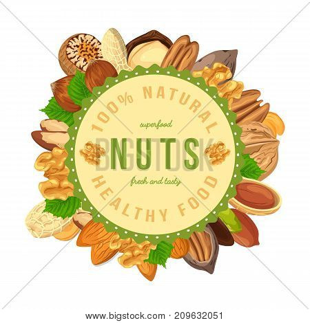 Round shaped poster or badge, sign or banner with seeds and nuts like pistachio and hazel, cashew and pecan, almond. Farming and agriculture, healthy nutrition and food, vegetarian and nature theme