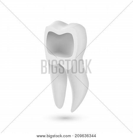 Illustration of Vector Tooth Icon. Realistic Teeth Isolated on White Background