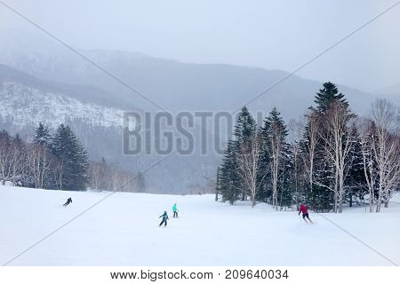 Skiers and snowboarders going down the slope at forest ski resort