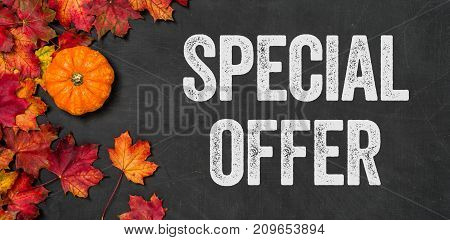 Special offer written on a blackboard with foliage