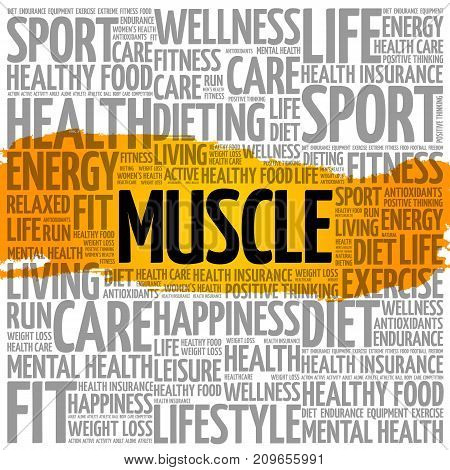 Muscle word cloud collage , health concept background