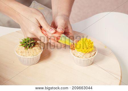Confectioner Decorates  Cupcake