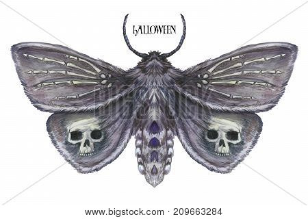 Watercolor drawing of a night butterfly, a terrible butterfly on a Halloween holiday with a skull on its wings and bones, a wrist of a skeleton, a furry butterfly on a white background