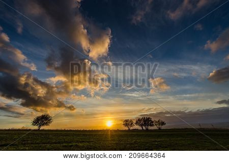 Sunset in summer green grass and blue sky with clouds