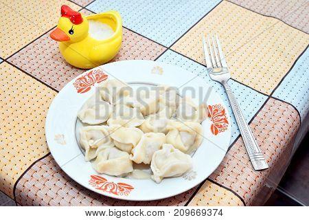 dumplings lunch duck salt shaker salt oilcloth fork plate old dishes squares table