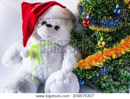 A Santa Claus Hat And A Christmas Tree With A Toy Of A Teddy Bear, On A Light Background.