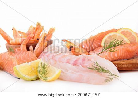 assorted raw fish and seafood