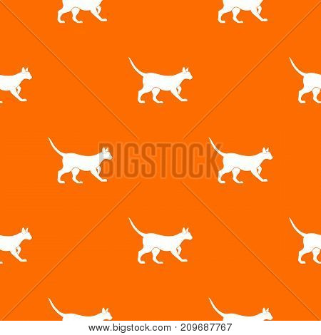 Cat pattern repeat seamless in orange color for any design. Vector geometric illustration