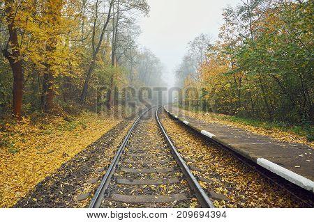 Autumn mood on the trip. Rural railway station in fog.