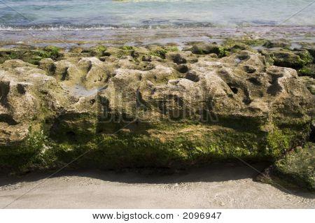 Bumpy Rock At Los Gatos Beach