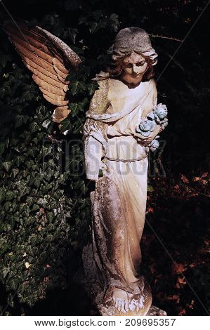 Ancient statue of an angel in the shadow of a shrub. Deep dark shadows. (Religion Faith Eternity Wings Concept)