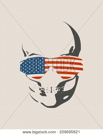 Anatomic skull in sunglasses textured by flag of USA. Detailed illustration of human skull.