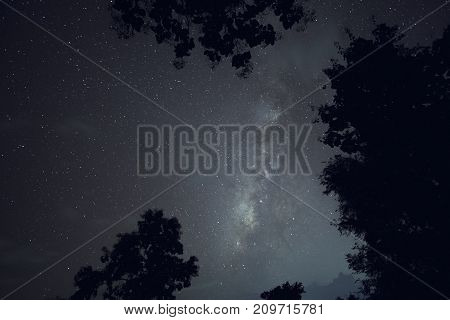 Long exposure and High ISO shot of star and milky way over the mountain and silhouette of tree at night. Blue tone effect.
