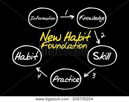 New Habit Foundation Diagram