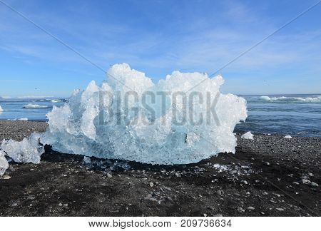 awesome iceberg on clack sand on the beach of a lagoon