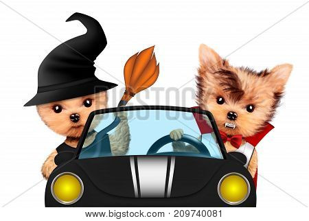 Funny cartoon animal Dracula and witch sit in black car. Halloween and Dead day concept. Realistic 3D illustration.