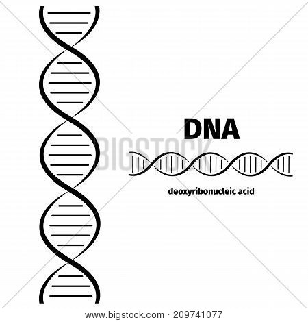 Science template banner with a DNA molecules. Vector illustration.