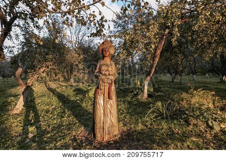 the photographer and the wooden girl in an autumn apple-tree garden at sunset