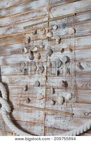 sea shells in a fishnet, on wooden board, summer vacation background.