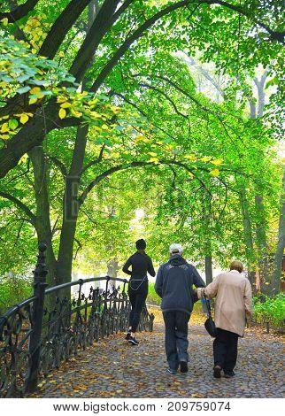 Senior couple enjoying walking in foggy autumn Park