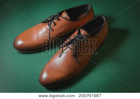 Brown leather executive shoes in green background